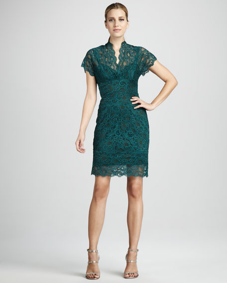 Stretch-Lace Dress