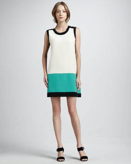 Caitlin Colorblock Shift Dress