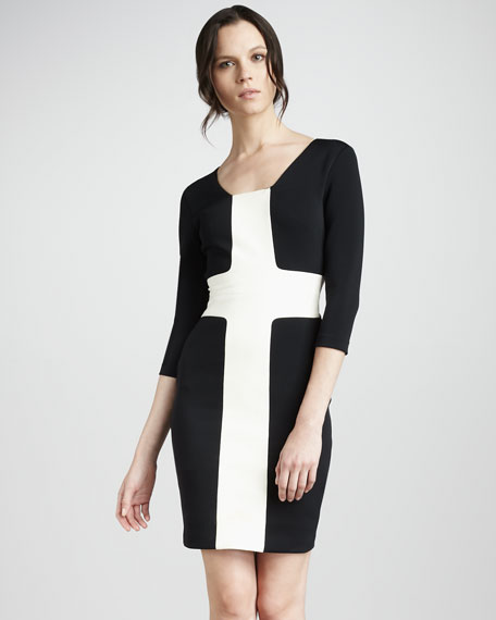 Fitted Contrast Dress