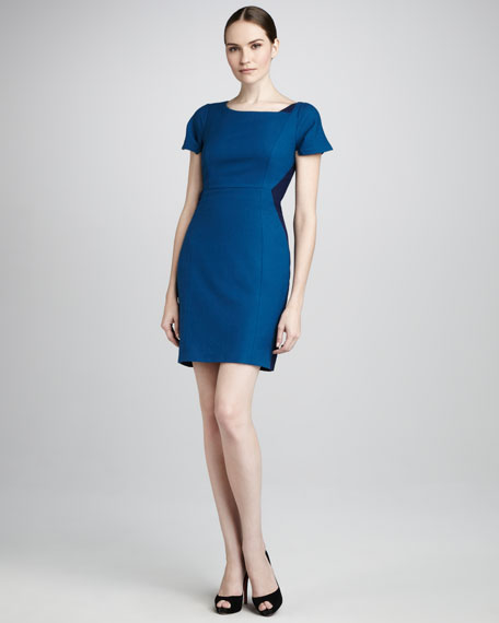 Estelle Two-Tone Sheath Dress