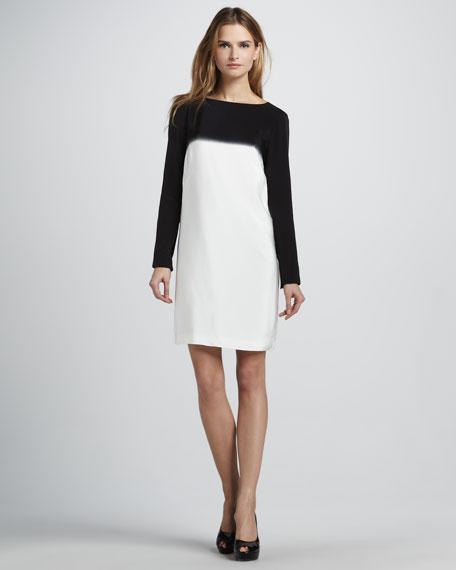Colorblock Long-Sleeve Shift Dress
