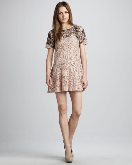 Beautiful Dream Two-Tone Lace Dress