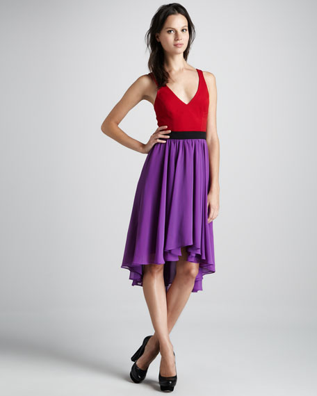 Francis Two-Tone Dress