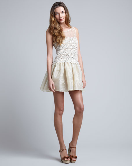 Lace-Embroidered Organza Dress, Ivory