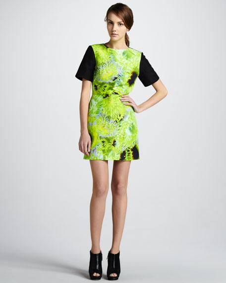 Printed Solid-Sleeve Dress