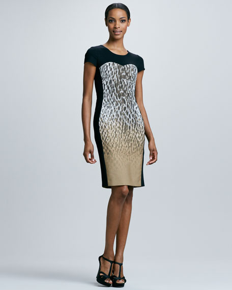 Leopard-Print Block Sheath Dress