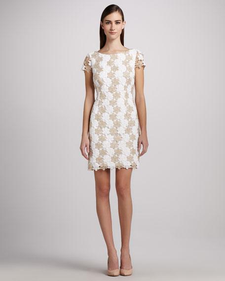Barbara Two-Tone Lace Dress