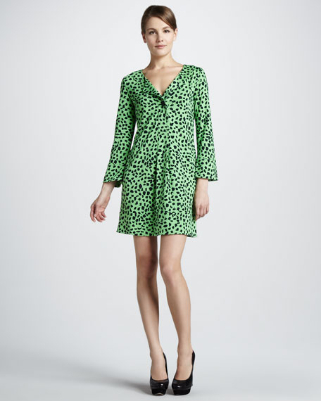 Gaby Printed Long-Sleeve Dress