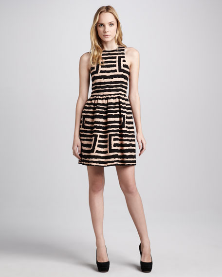 Geo Zebra Sleeveless Dress