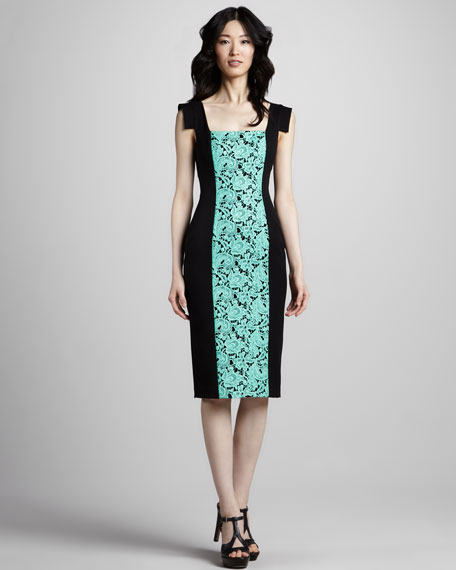 Francisca Lace-Panel Dress