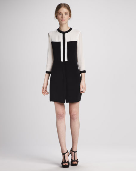 Colorblock Paneled Silk Dress