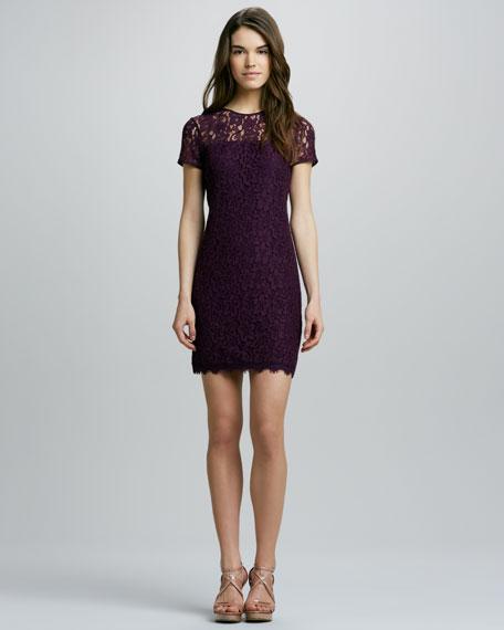 Lace Dress with Semisheer-Yoke