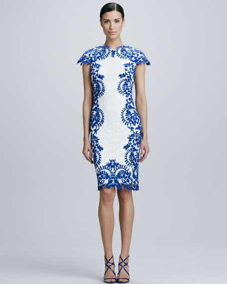 Tadashi Shoji Lace Panel Cocktail Dress