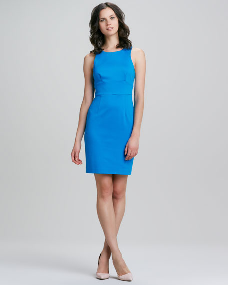 Robyn Sleeveless Fitted Dress