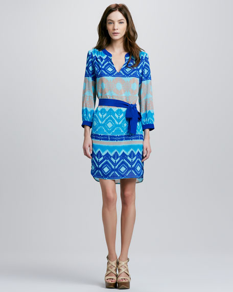Zenith Printed Dress