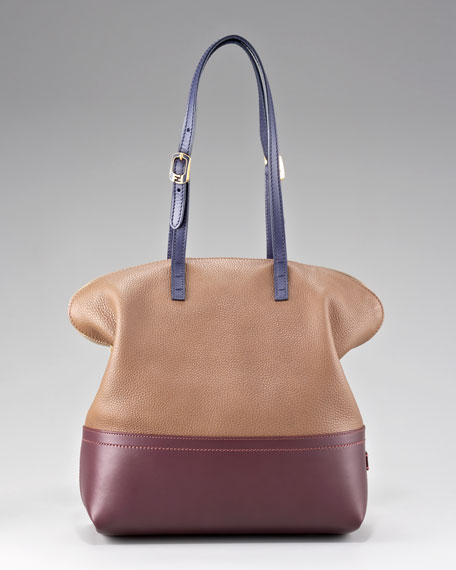 Silvana 2Bag Colorblock Tote