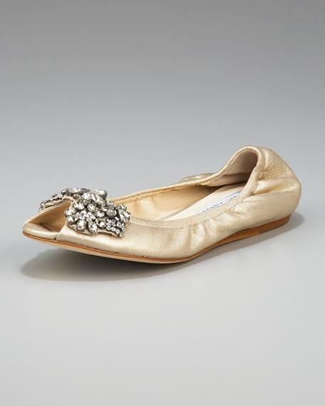 Luna Jeweled Ballerina Flat