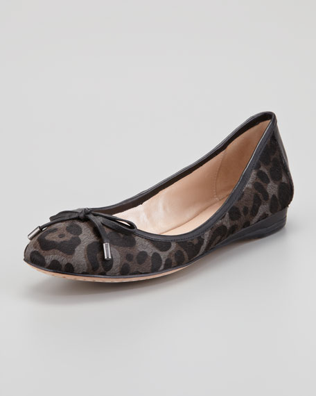Rikita Leopard-Print Calf Hair Ballerina Flat, Slate