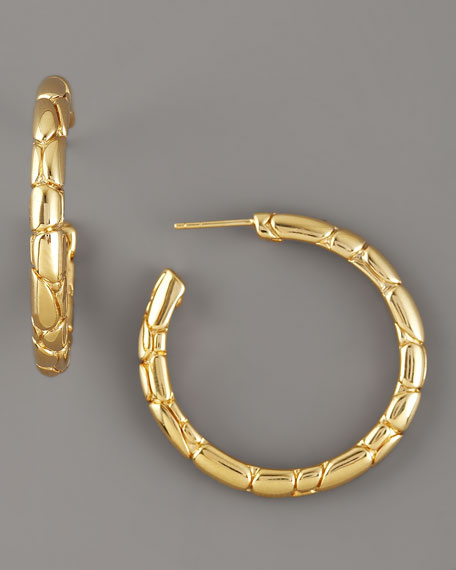 Gold Kali Hoop Earrings