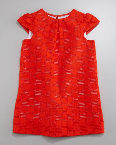 Tangerine Daisy Shift Dress, Size 2-6