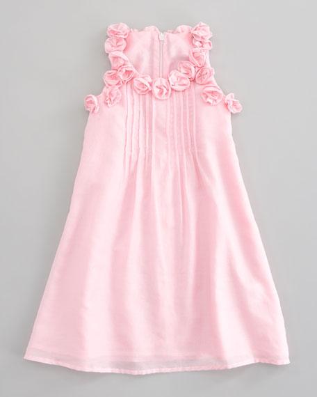 Sleeveless Floral Trim Dress, Sizes 2-4