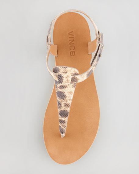 Maia Snake-Print Thong Sandal