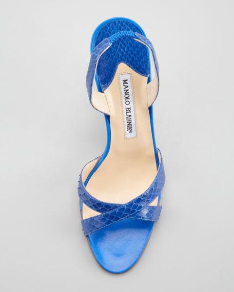 Callasli Snakeskin Crisscross Halter Sandal, Royal Blue