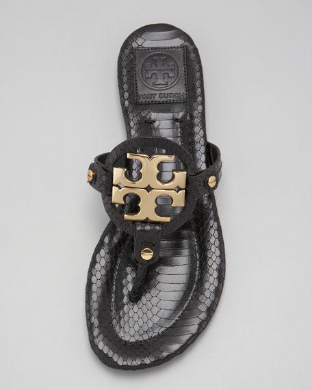 Miller2 Snake-Print Thong Sandal, Black