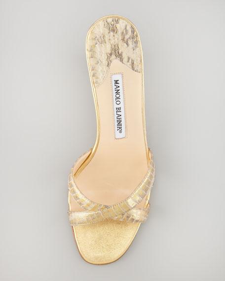 Callamu Crisscross Slide Sandal