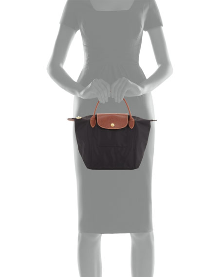 Le Pliage Small Handbag