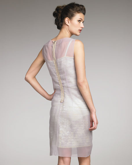 Organza-Overlay Dress