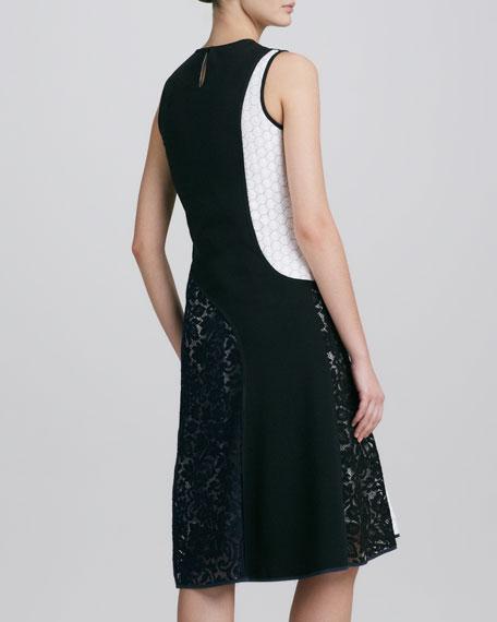 Sleeveless Colorblock Lace Combo Dress