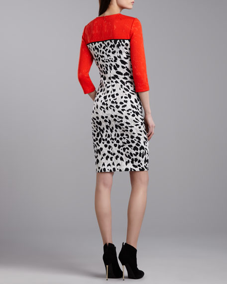 Animal Milano Colorblock Dress, Flame/Multi