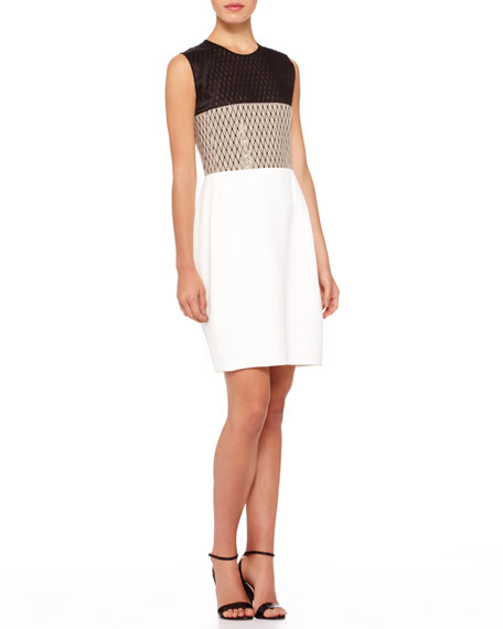 Colorblock Net-Top Dress