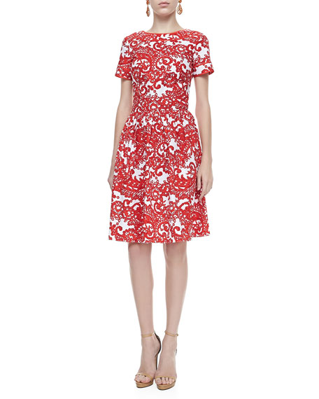 A-line Short-Sleeve Paisley Dress, Vermillion/White