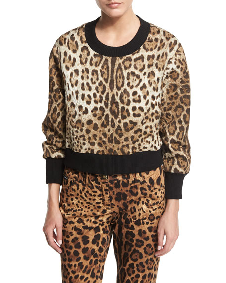Dolce & Gabbana Leopard-Print Top with Knit Collar