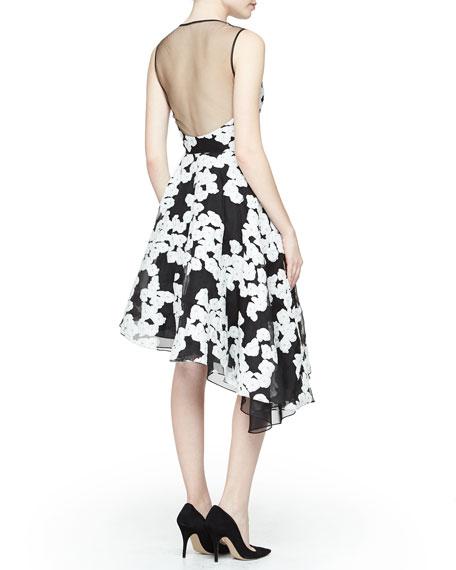 Floral-Print Asymmetric Ruffled Dress, Black/Ivory