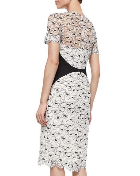 Lela Rose Short-Sleeve Lace Sheath Dress, Ivory/Black