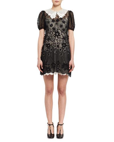 Starry Night Short-Sleeve Organza Dress, Black