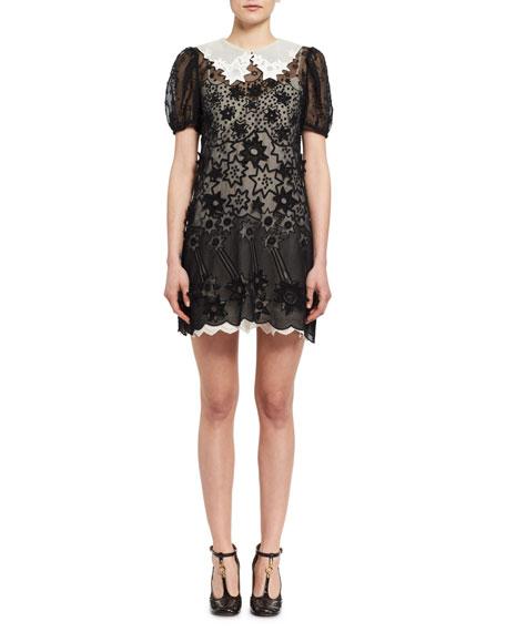 Chloe Starry Night Short-Sleeve Organza Dress, Black