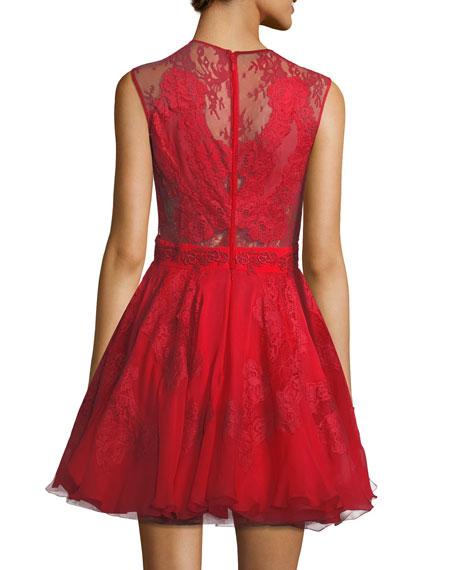 Lace & Chiffon Fit & Flare Dress