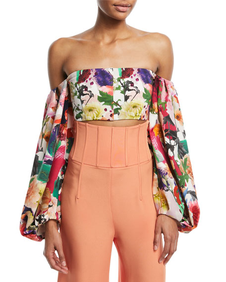 Cushnie Et Ochs Carlita Off-the-Shoulder Floral-Print Crop Top