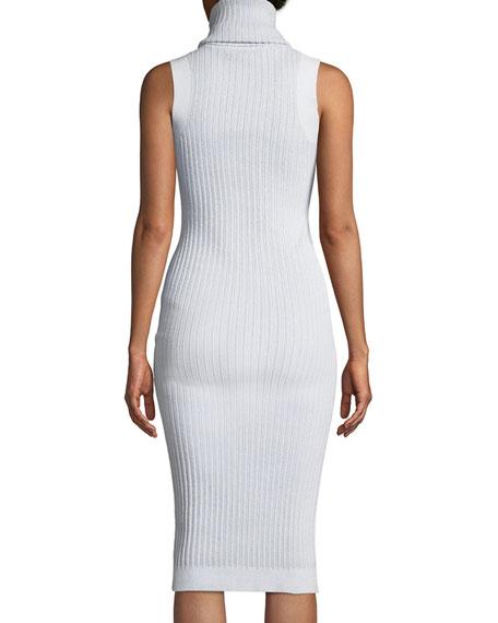 Sleeveless Turtleneck Ribbed Mid-Calf Sheath Dress