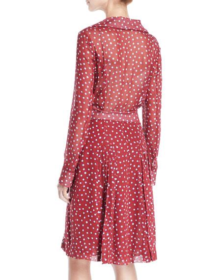 Long-Sleeve Button-Front Belted Dot-Print Silk Shirtdress