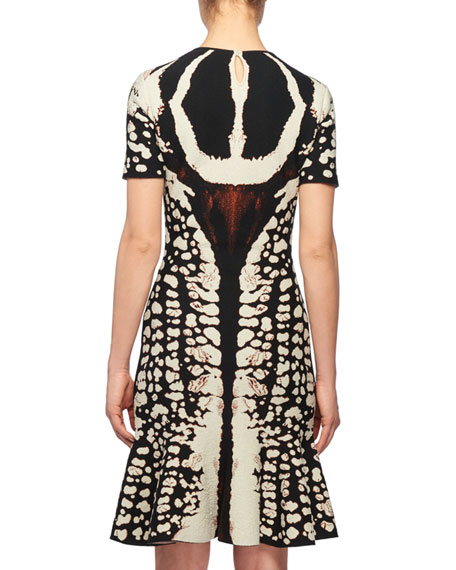 Alexander McQueen Crewneck Short-Sleeve Abstract Bug-Jacquard Flared Knit Dress