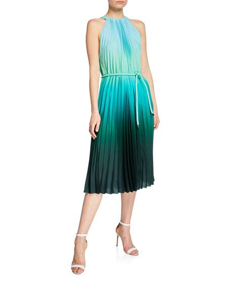 Maxmara Musette Ombre Pleated Trapeze Dress