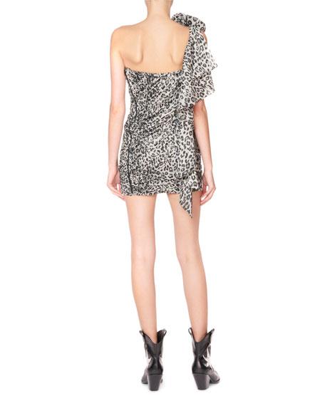 Redemption Animal Print Rosette-Shoulder Mini Dress