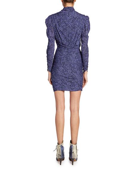 Isabel Marant Jisola Long-Sleeve Animal-Print Dress