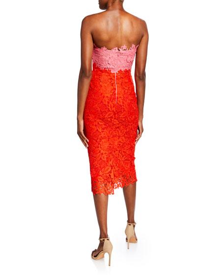 Lela Rose Colorblocked Chantilly Lace Sheath Dress