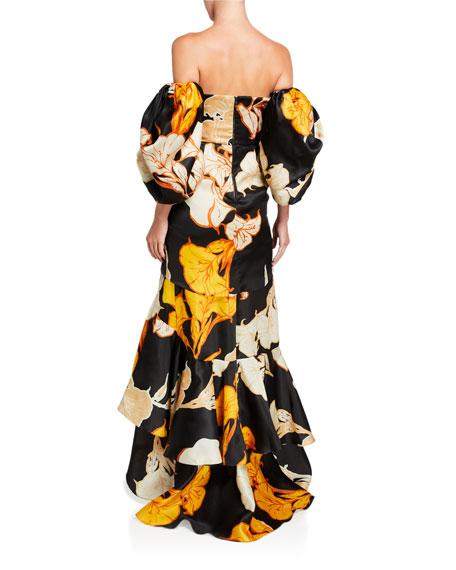 Johanna Ortiz Cosmic Origin Floral-Embroidered Dress